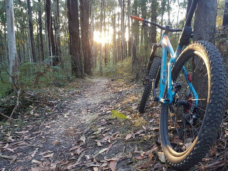 Trasa rowerowa dla każdego